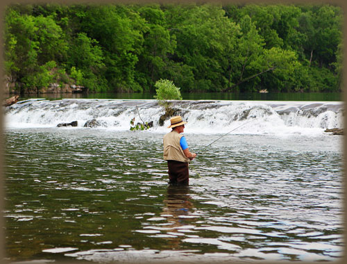 Dawt Mill Fly Fishing